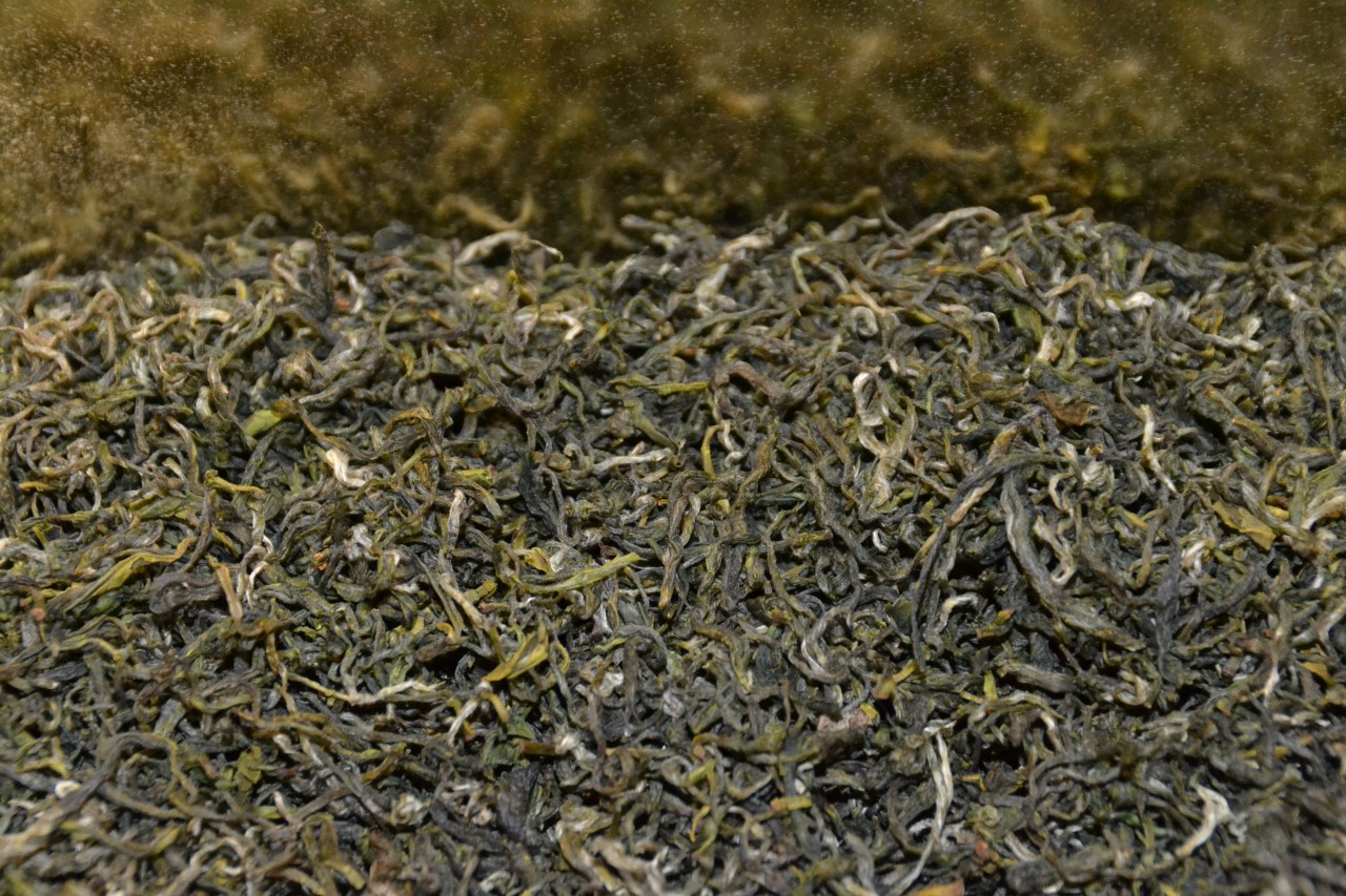 Darjeeling 1v first flush