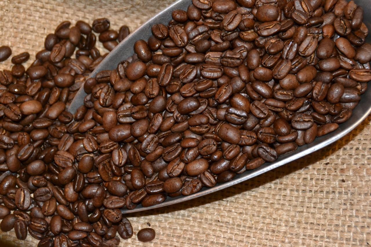 Kaffee-Sorte 'O'