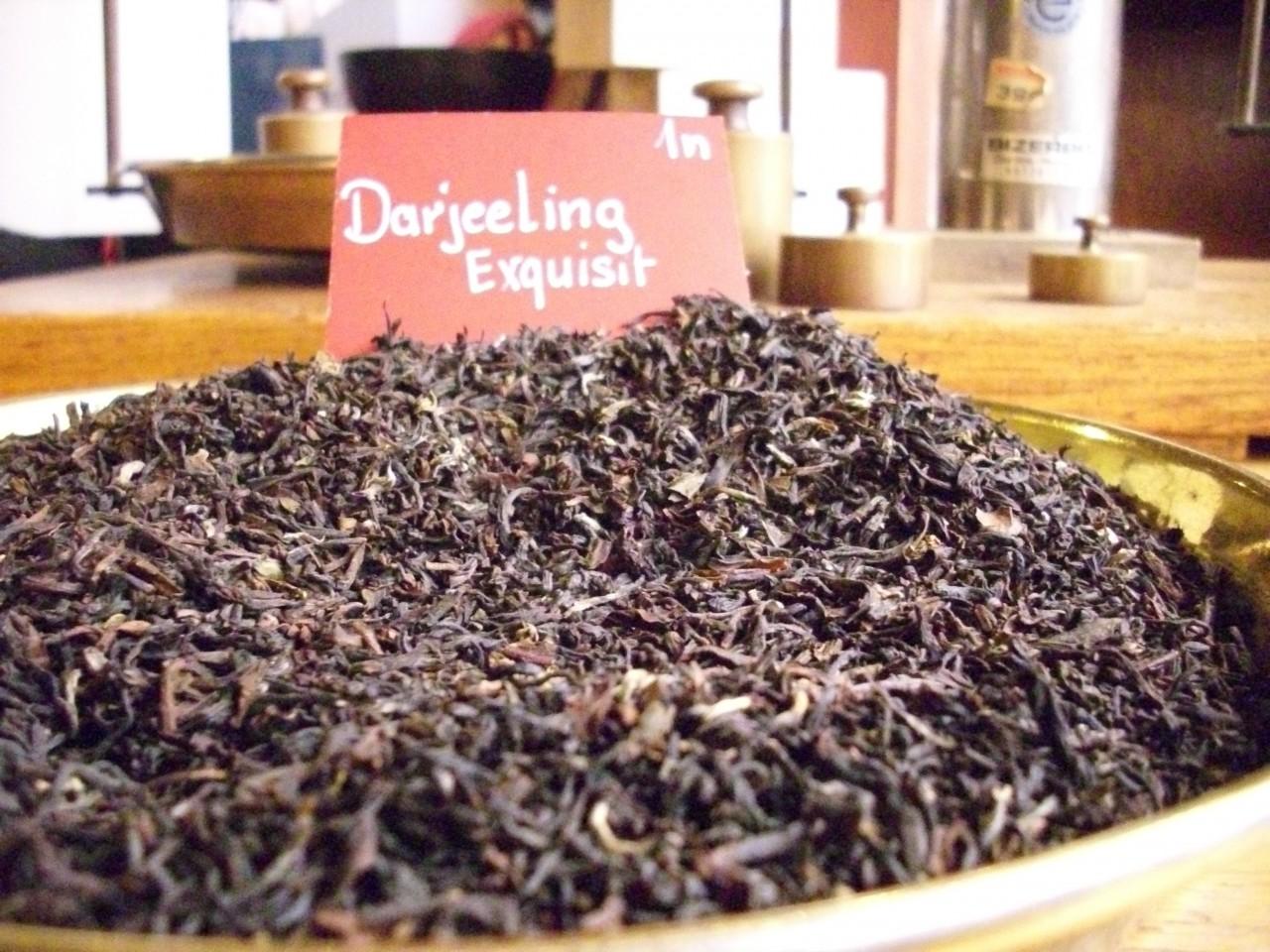 Darjeeling 1N