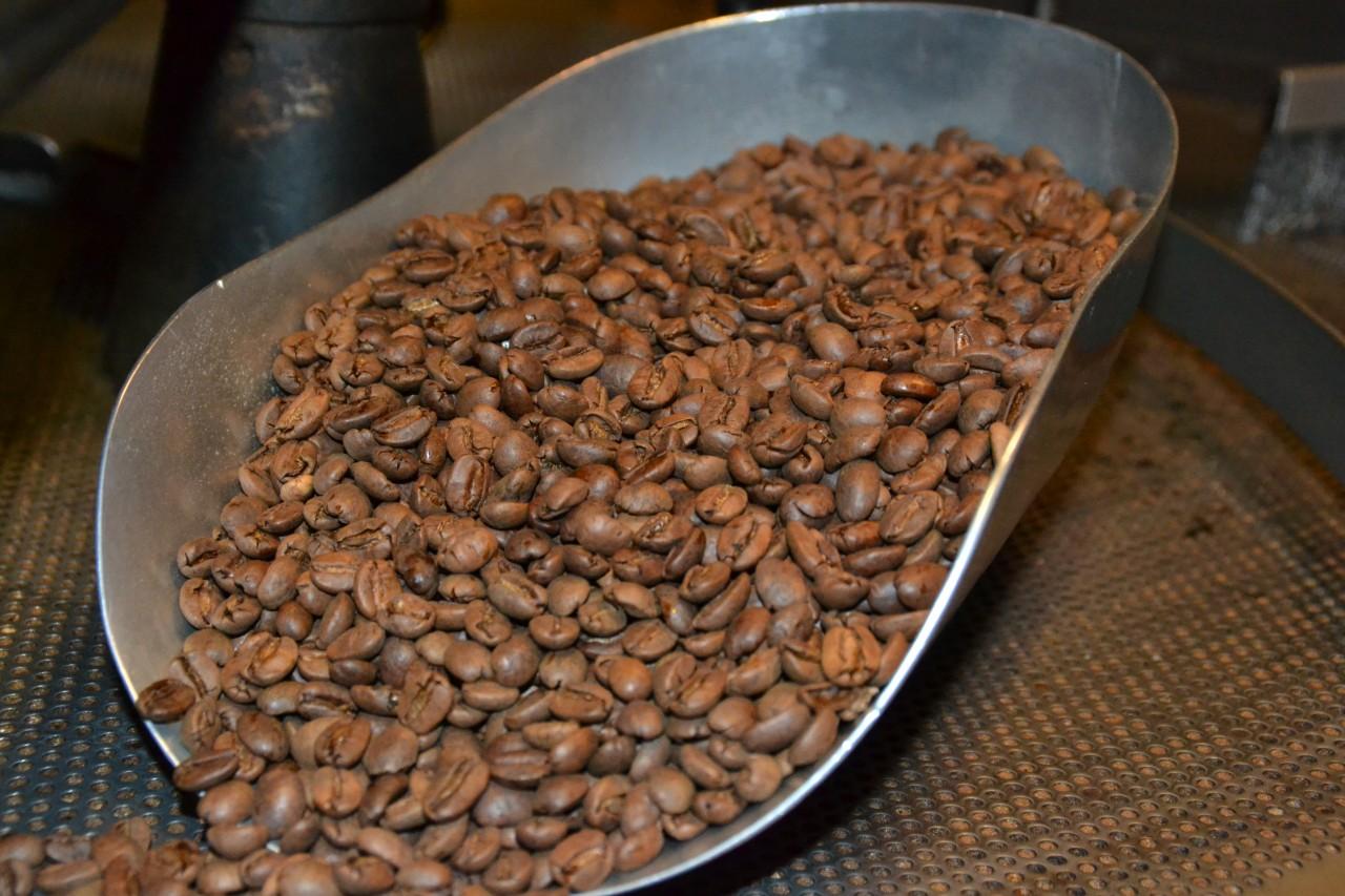 Kaffee Dominikanische Republik